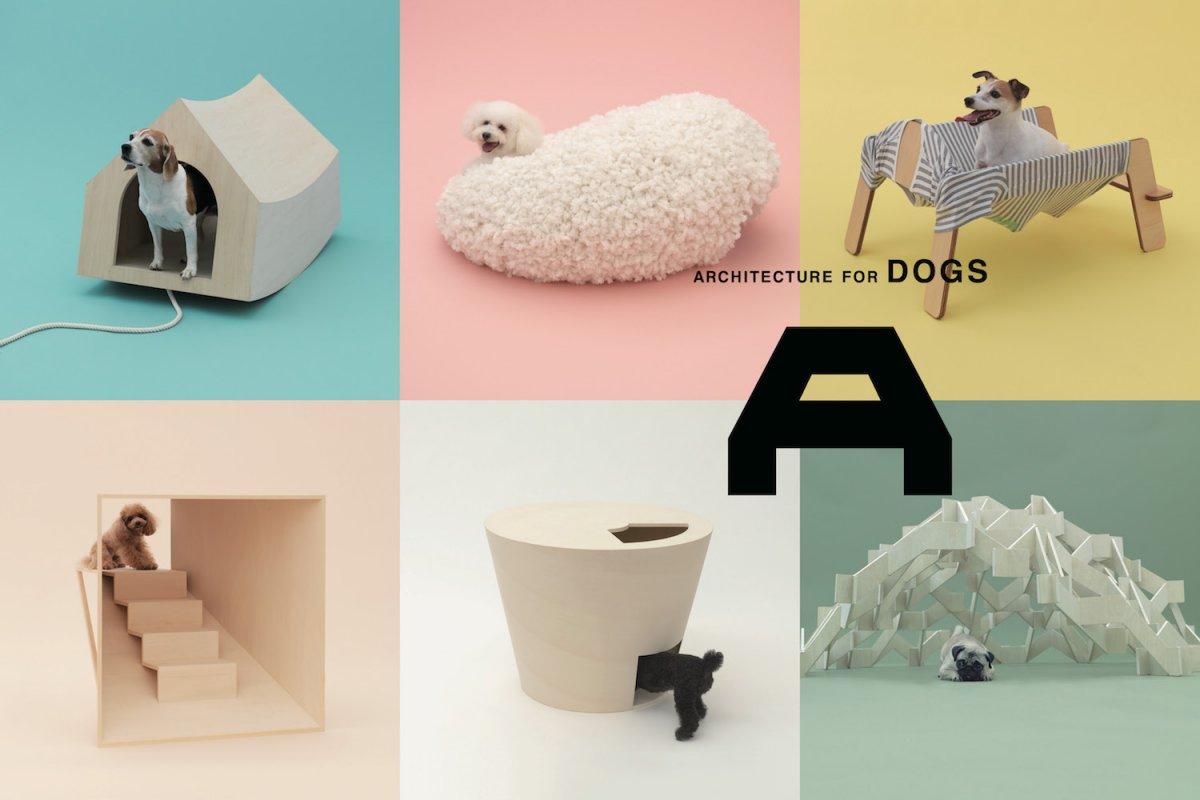 「犬のための建築」 EXHIBITION